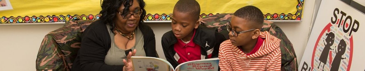 Literacy Fellows